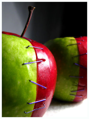 apple_genes_spliced_by_bonkrissybon1