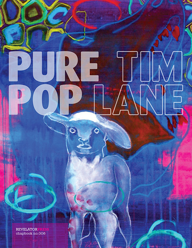 Pure Pop by Tim Lane